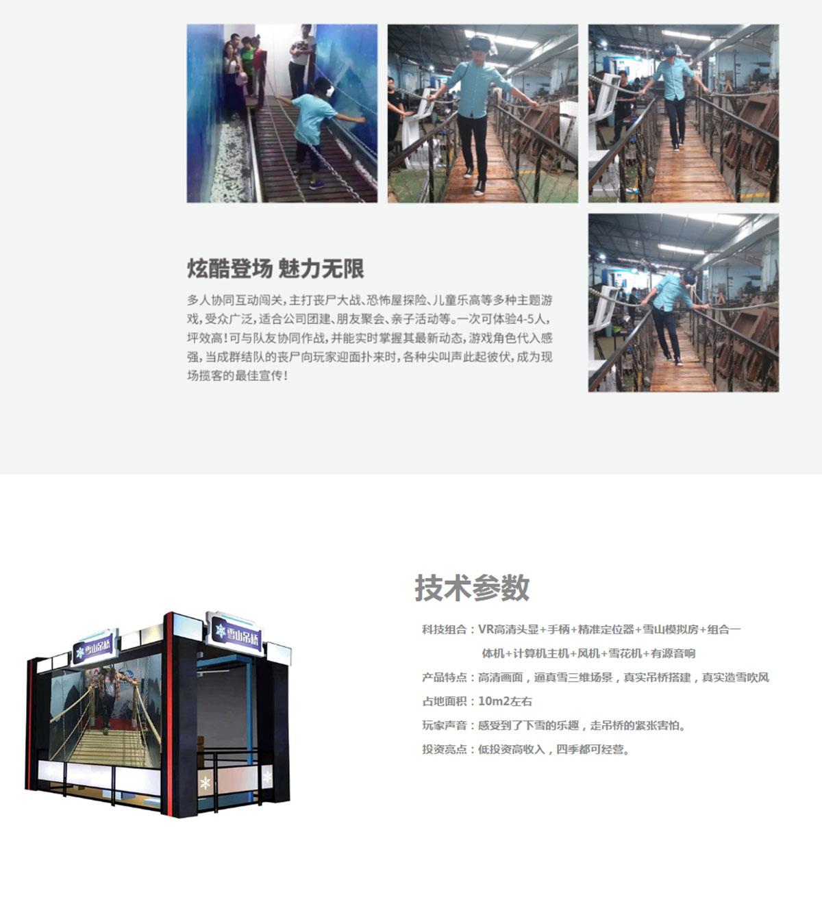 VR雪山吊桥插图1